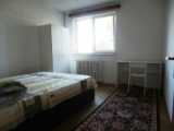 Apartament 2 camere, Favorit
